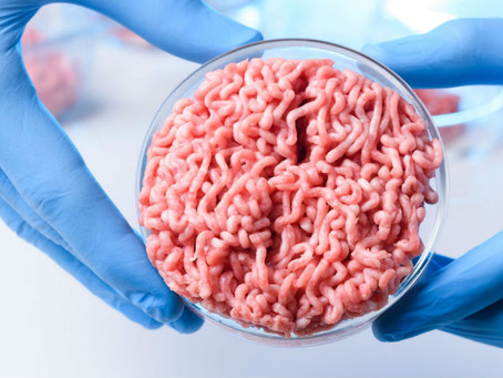 Cellular Agriculture; Is it Vegan?