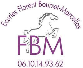 logo EFBM.jpg