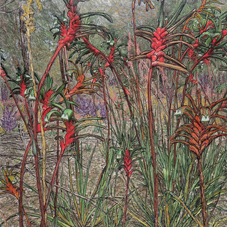 Bloom, 2019  84 x 68 cm  Embellished inkjet canvas photographic print using free motion machine stitching, acrylic marker, wadding