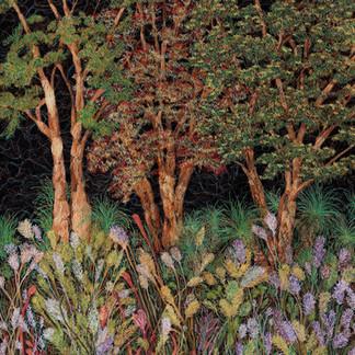 Bushland Bloom, 2019  92 x 87 cm  Free motion machine stitching on bleach painted fabric, acrylic markers, wadding  Finalist John Villiers Outback Art Prize 2021, Australian Textile Art Award, 2020