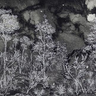 Traversing the Night, 2020  82 x 119 cm  Free motion machine stitching on bleach spray painted fabric, permanent marker, wadding  Finalist, Art Quilt Australia 2021, Heysen Prize for Landscape 2020