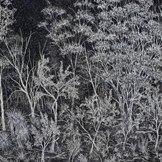Old Girls, Teas and Gums, 2021  68 x 99 cm  Free motion machine stitching on black primed canvas  Finalist Fibre Art Now, Emerging Artist Showcase 2021, Massachusetts, USA                                             80 x 106 cm  Free motion machine stitching on canvas, wadding  (sold) Old Boy, 2016  36 x 26 cm  Free motion machine stitching on fabric, ink, wadding  (not available)   Incineration, 2020  48 x 98 cm  Free motion machine stitching on bleach sprayed painted fabric using native plant stencils, acrylic marker, wadding  (selected forThe New Quilt, for sale POA) Before the Snow, 2016  41 x 30 cm  Free motion machine stitching on unique state linocut fabric print, wadding  (sold) Where Petals Fall, 2021  53 x 81 cm  Free motion machine stitching, ink and acrylic marker drawing, batting  (d'Arcy Doyle Art Prize, upcoming)  Wild Pineapple II, 2018  23 x 20 cm  Free motion machine stitching on unique state lino-cut fabric print, wadding  (for sale, framed, POA) Gentle Breeze, 2016   32 x 28 cm  Free motion machine stitching on monotype fabric print, wadding  (not available)  Bushland Bloom, 2019  92 x 87 cm  Free motion machine stitching on bleach painted fabric, acrylic markers, wadding  (sold, finalist John Villiers Outback Art Prize, Australian Textile Art Award finalist)   Poa Centerpiece, 2016  51 x 39 cm  Free motion machine stitching on monotype fabric print, wadding  (not available) Old Girls, Teas and Gums, 2021  68 x 99 cm  Free motion machine stitching on black primed canvas  (Upcoming, d'Arcy Doyle Art Awards)