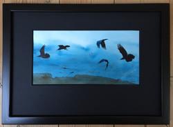 Ravens 12 - SOLD