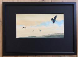 Ravens 6 - SOLD