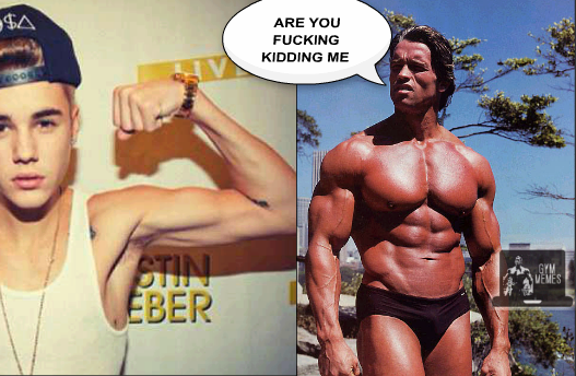 Arnold is not impressed - Imgur.png