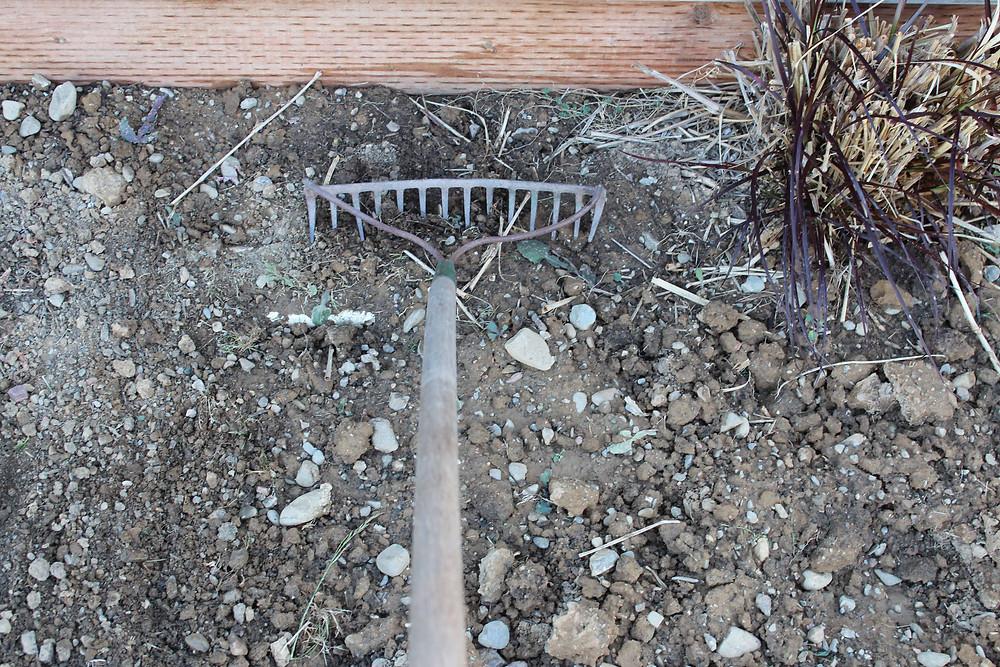 raking rocks.jpg
