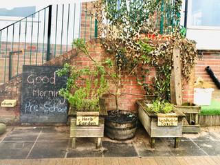 Pre-School (Herb Garden)