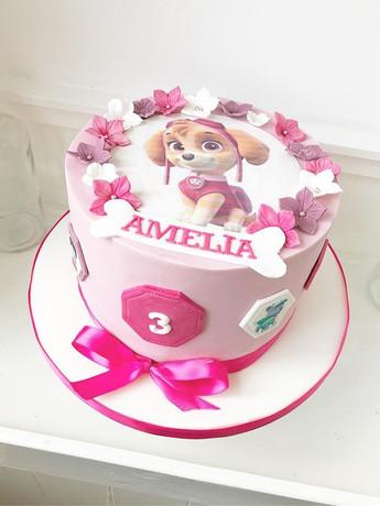 Paw patrol cake for Amelia's 3rd birthda