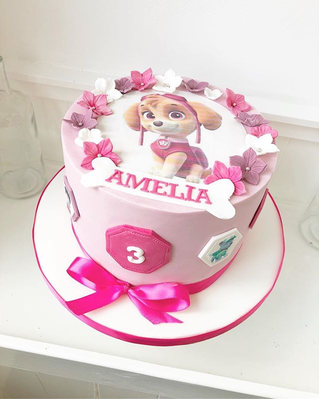Paw patrol cake for Amelia's 3rd birthda