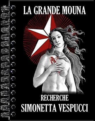 Carnet de notes - Simonetta Vespucci