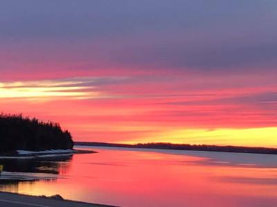 PECI Pink Sunset.jpg