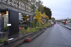 FIAC at Seine River