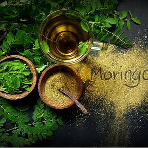 Mighty Moringa