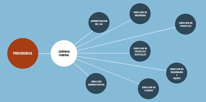 Estructura Corporativa organigrma demuestrativa