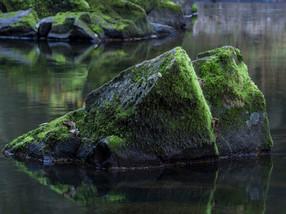 Schattenmühle_101115_AF_103.jpg
