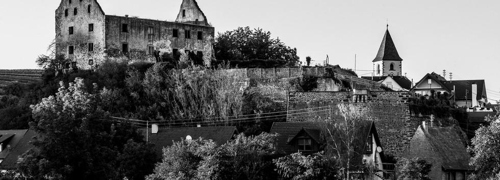 Burkheim_300620_AF_016.jpg