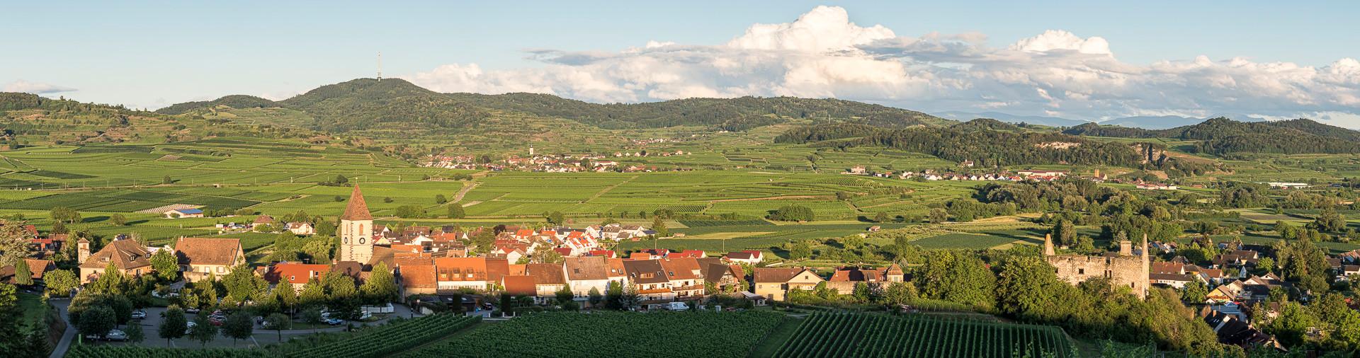 Burkheim_290620_AF_062-Pano.jpg