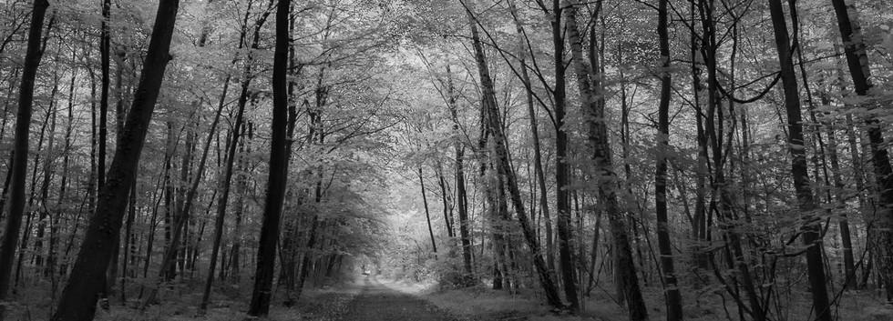 Burkheim_130620_AF_026.jpg
