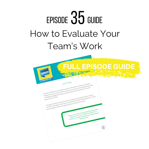 Guide to Episode 35: Evaluating Your Team's Work