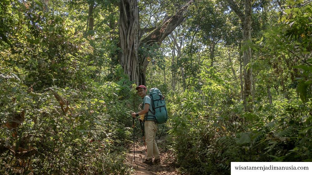 Rute Jalan Awal Pendakian Gunung Bekel Melewati Hutan
