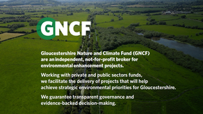 Gloucestershire Nature and Climate Fund seeks project manager