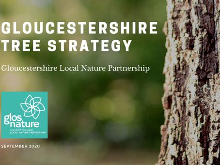 Gloucestershire Tree Strategy