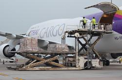Thai_Cargo_747F.jpg