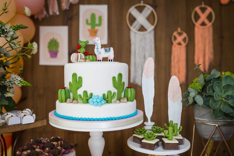 Festa Lhama e Cactus