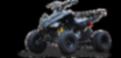quad-quadriciclo-storm-125cc.png