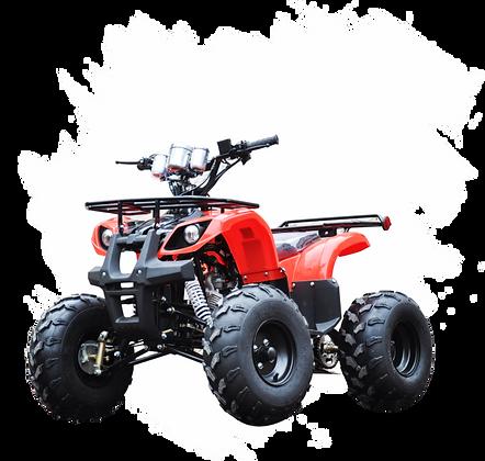 Quadriciclo Spirit 125cc  Automático