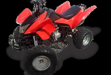 Rider 250cc