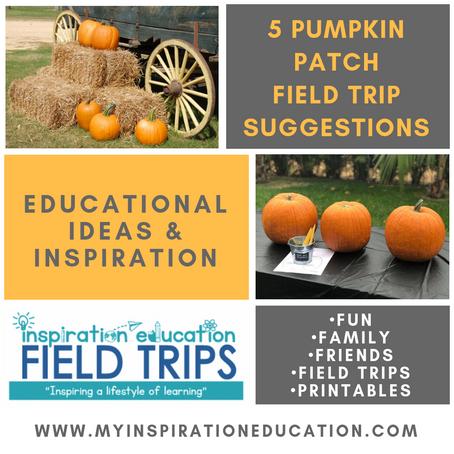 Pumpkin Patch Field Trip Inspiration