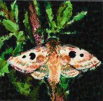 밤3, watercolor on canvas, 20.0 x 20.0 cm, 2013