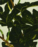 무화과 나무, watercolor on canvas, 27.3 x 22 cm, 2016