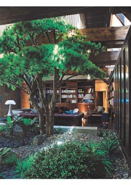 Casa e jardim-09.jpg