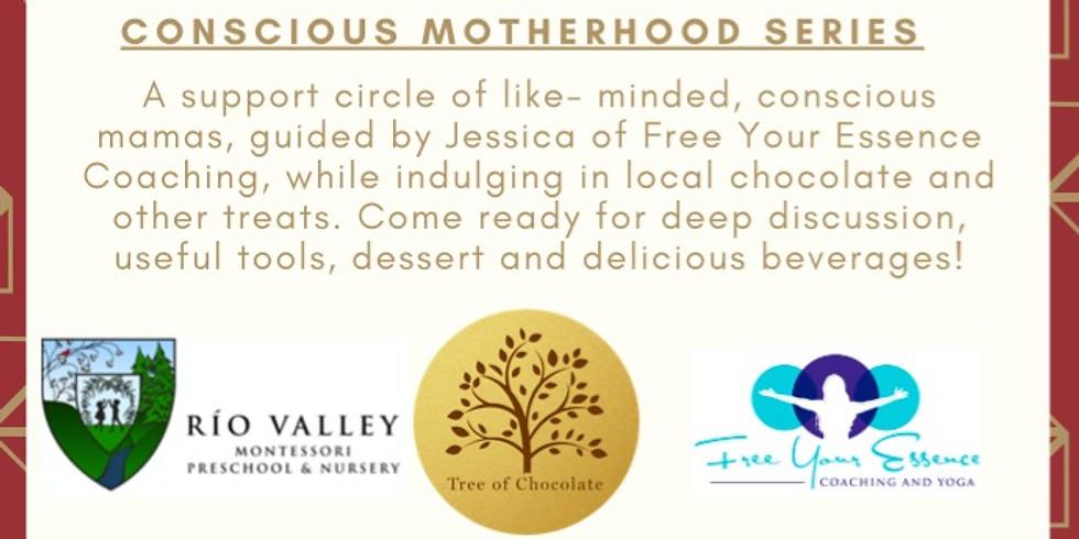 Navigating the Terrain of Parenting Partnerships in Conscious Motherhood