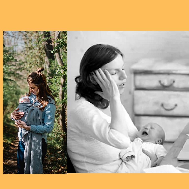 Conscious Motherhood: Bridging the Gap between Theory and Reality