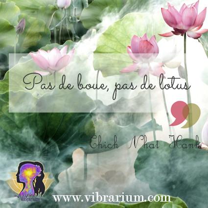 fleur de lotus, lotus flower, signification, symbole,zen, spiritualités, s'épanouir, boue, blessures, souffrance, douleurs, tristesse, abandon, deuil, séparation, aller mieux, s'épanouir, changer, changement, harmonie, bien-être