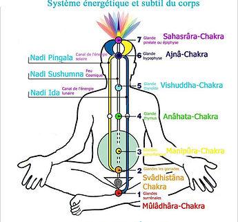 Système énergétique soin, reiki, EFT, acupession, chakras,