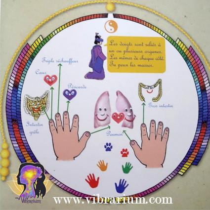méridiens, acupressure, doigts, mains, enfant, parents, bébé, calmer, apaiser, colère, chagrin