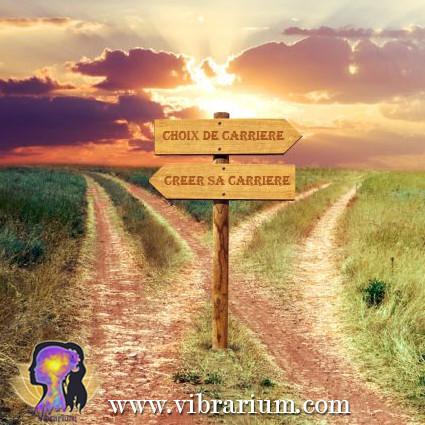 carrière, choix, vie, profession, professionnel, savoir, cadre, moule, chemin