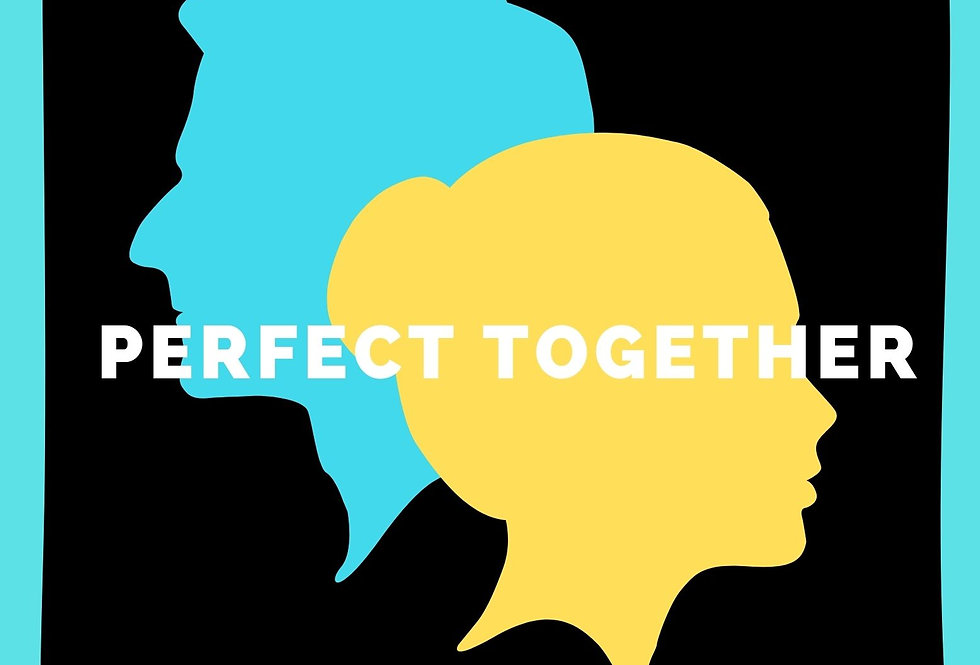 Perfect together couples t shirt
