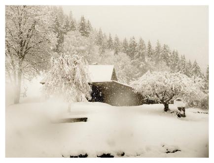 Snow Fall 2