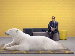 Polar Bear_0208_RET V4_RGB.jpg