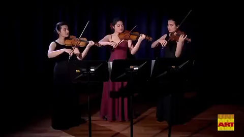 Eucharis Strings, an ensemble dedicated to performing chamber music from around the world, was founded by the Heath sisters in 2020. Regularly collaborating with guest artists such as Paris based cellist Lucia Bistritskaya, they frequently choose to perform lesser known works by female composers and composers of color. Students of the Yale School of Music, the Paris Conservatory, and the Mozarteum University, these talented young women have performed together throughout Europe, Canada, and the USA.