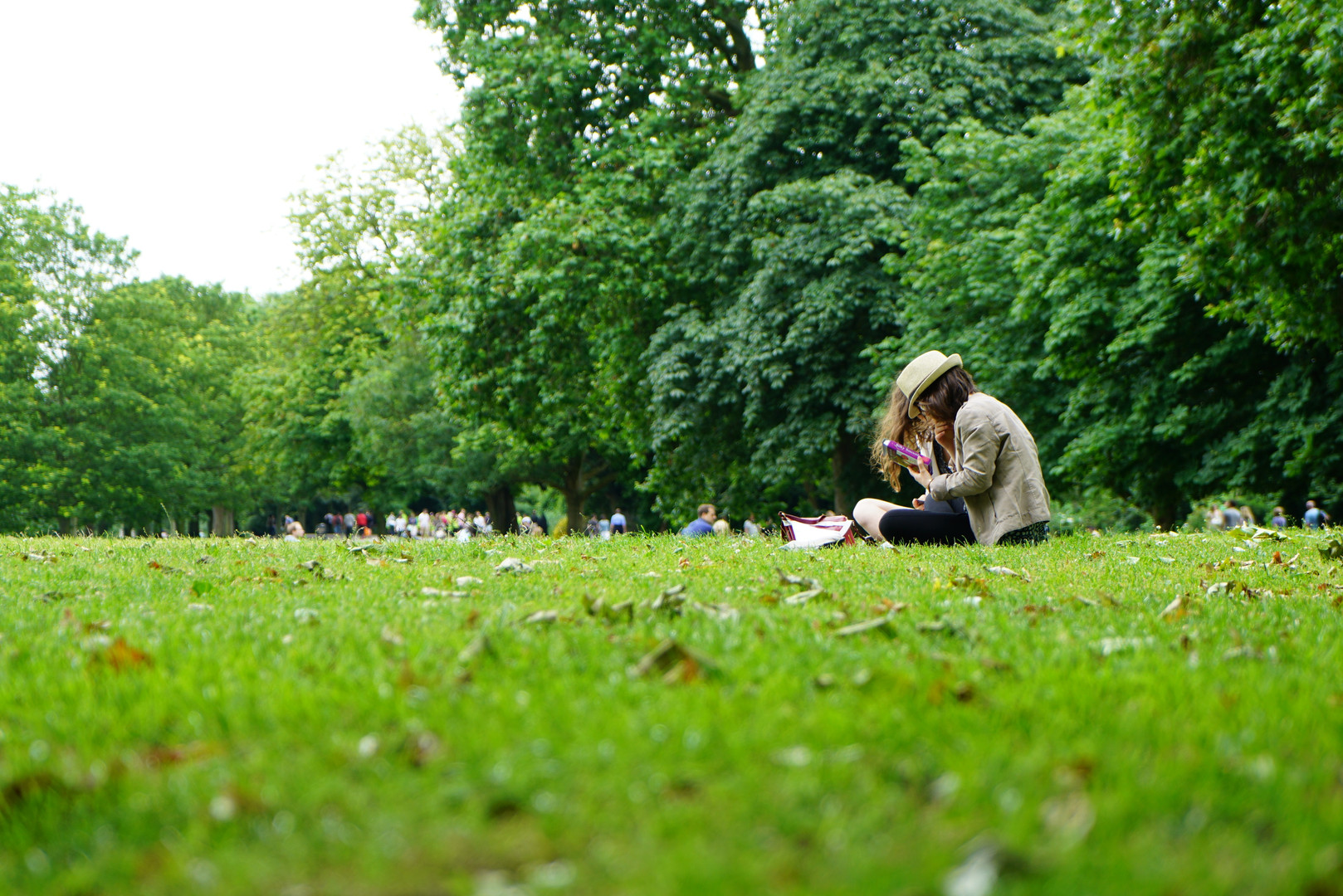people-sitting-on-green-grass-field-1528