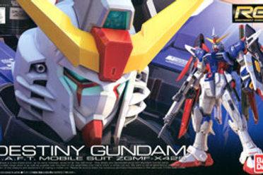 Destiny Gundam ZGMF-X42S (RG11) + Extras