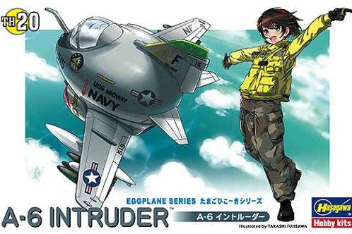 A-6 Intruder Eggplane