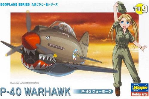 P-40 Warhawk Eggplane