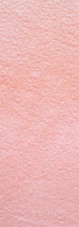rosa.webp